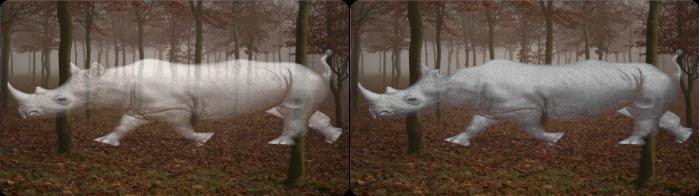 rhino_brown